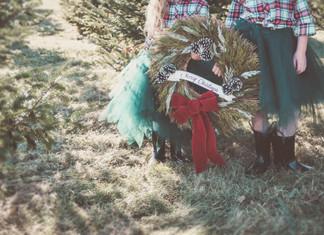 a tree farm Christmas - photo video