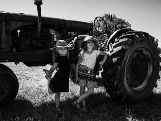 Fun on the Sunflower Farm