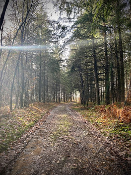 randonnée au sud morvan