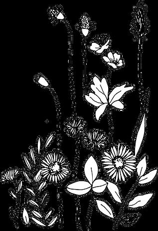 fleur prez anabelle@4x.png