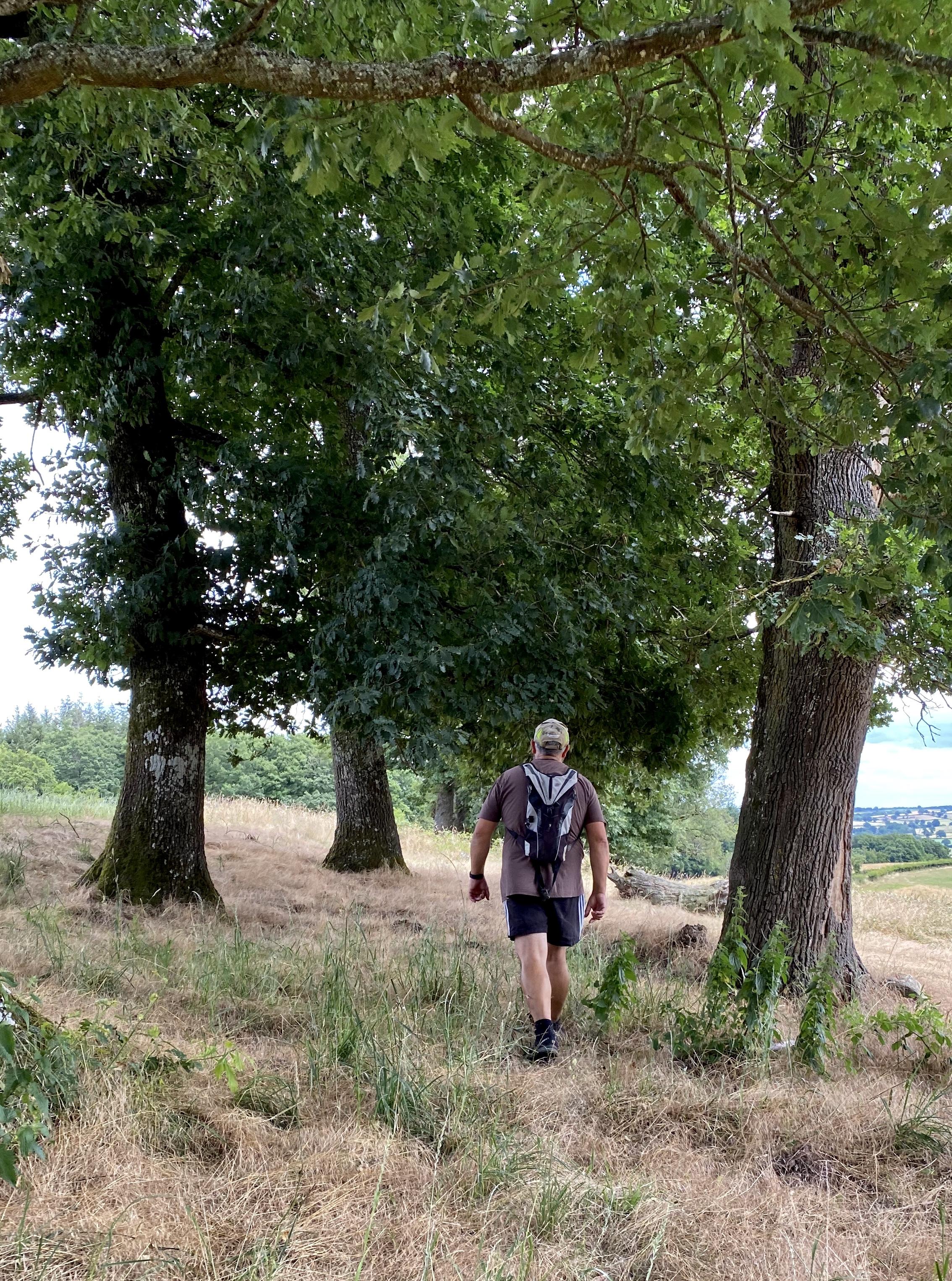 la randonnée en campagne