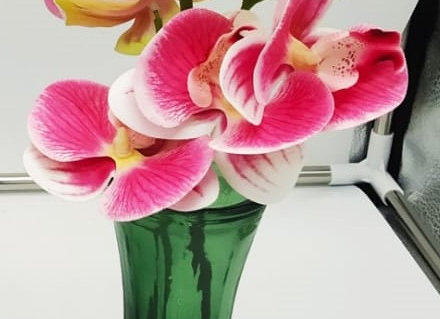 פרח סחלב באגרטל זכוכית