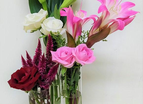 3פרחים מעניינים באגרטל מחולק ל -