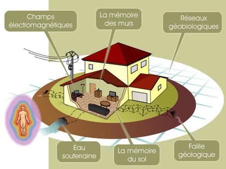 La géobiologie étudie l'influence des énergies