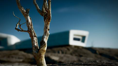 Desert Outcropping