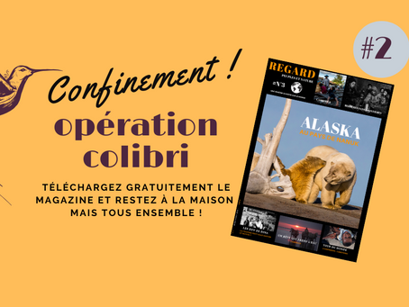 #2 - OPÉRATION COLIBRI - RÉSILIENCE