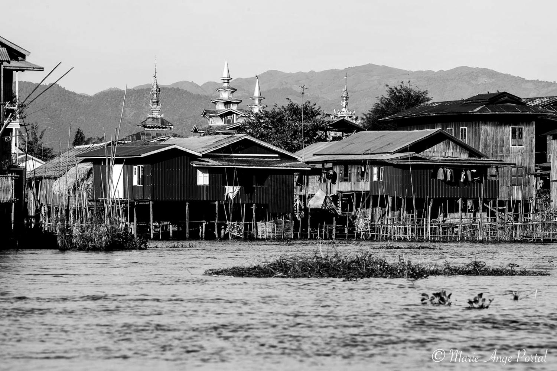 In-Situ_myanmar_9