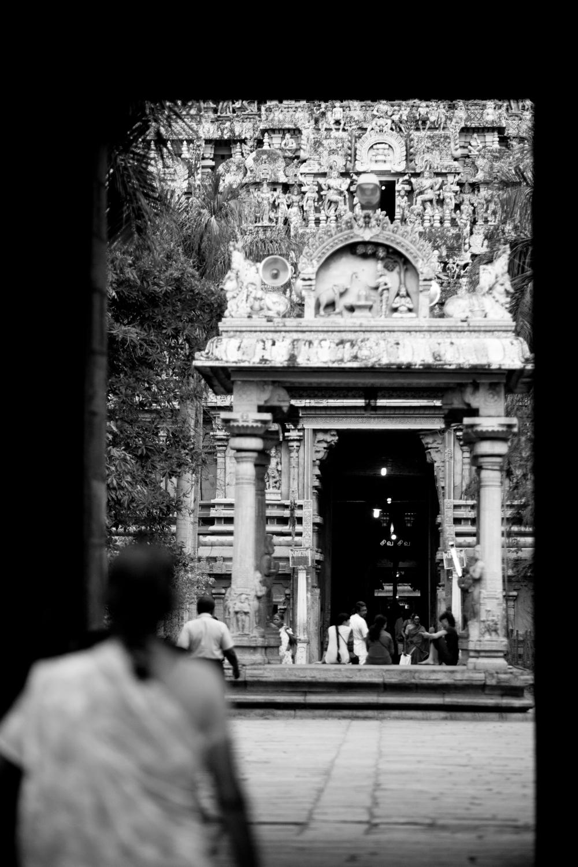 Inde_reportage_tamil nadou_trivi_nb-17