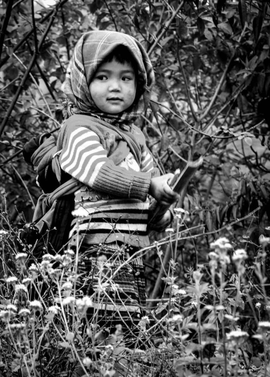 vietnam tonkin-86
