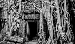 cambodge_photography_tonle_sap-45