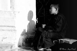 In-Situ_myanmar_3