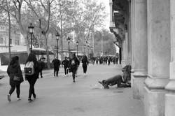 In-Situ_Barcelone_las-Ramblas-21