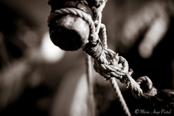 sanary_serie_sepia-greements-4