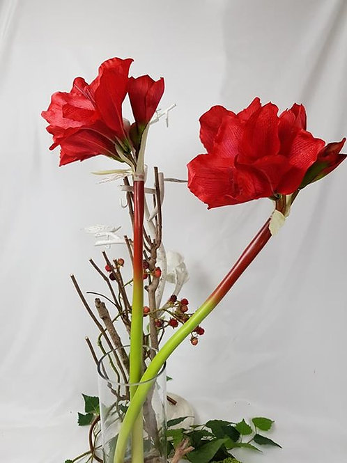 "Real to touch ""Amaryllis"""