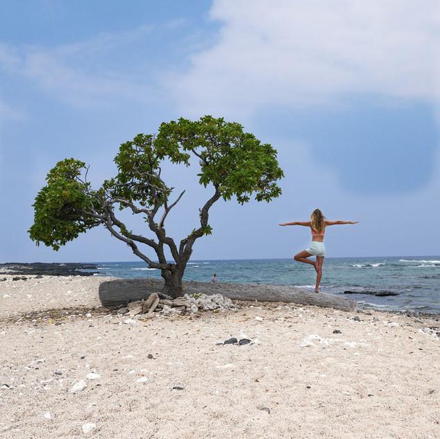 einsamer Strand Big Island