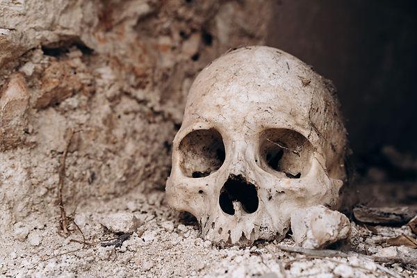 Человеческий череп на Генеральном кладбище Мериды
