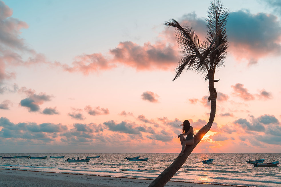 Восход солнца на пальме на пляже в Тулуме
