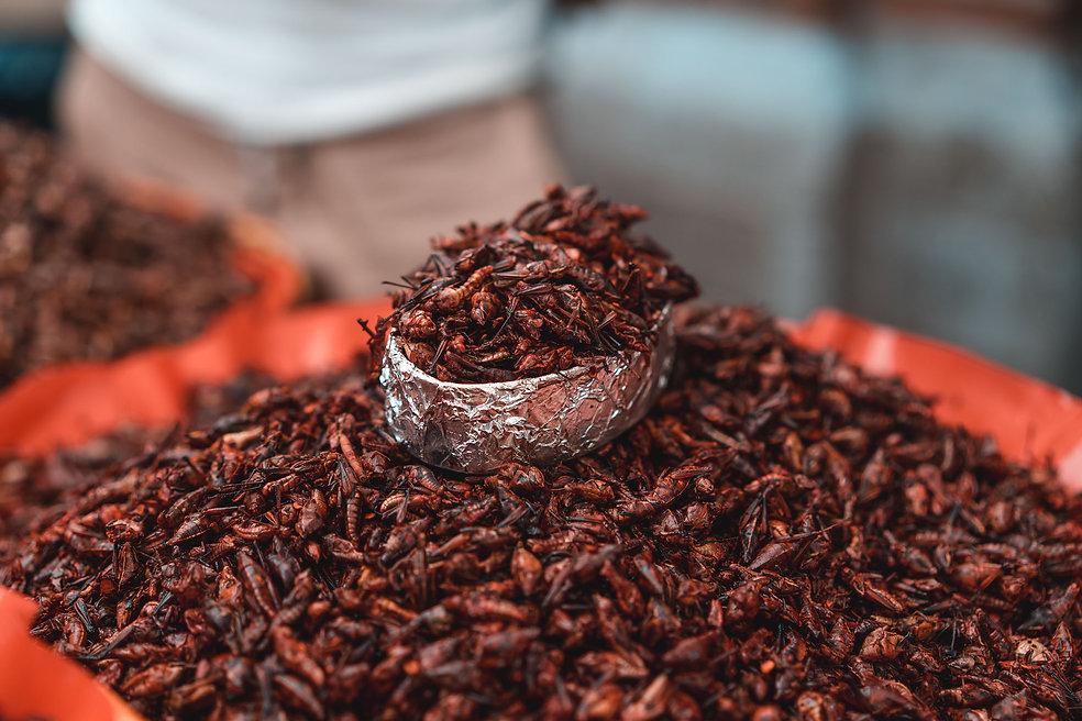 Жареные кузнечики с чили на рынке Мексики