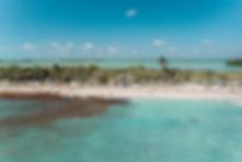 Экологическая проблема с мусором и водорослями в Карибском море у побережья Мексики в Тулуме