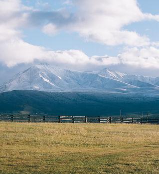 Путешествие в Монголию