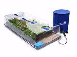 Aquabox Sypder - Produits.jpg
