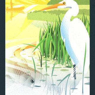 Tidewater Virginia Poster