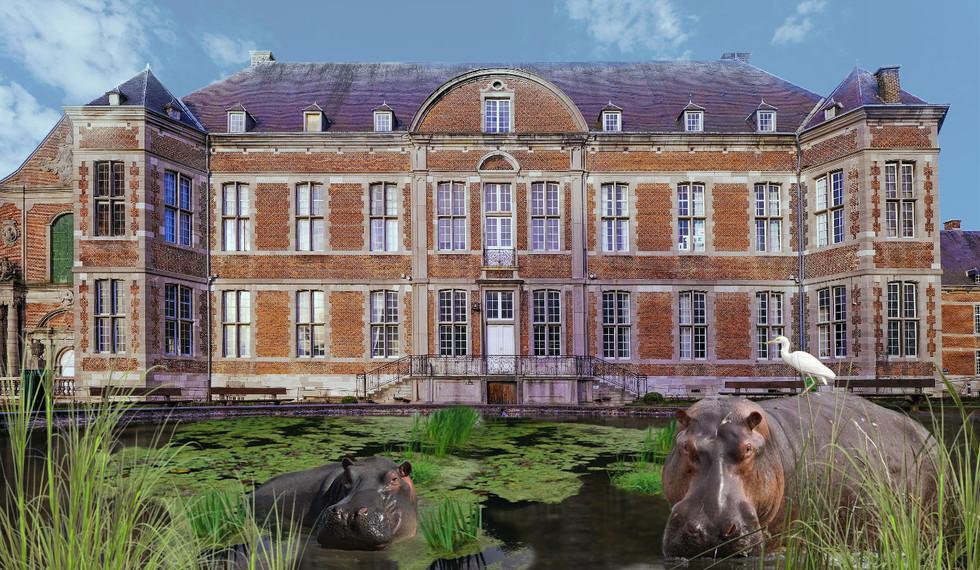 4. Hippopotames-floreffe.jpg