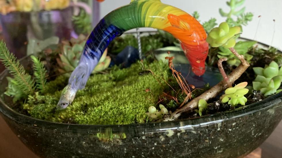 Giving Rainbow Fundraiser dolphin or hummingbird