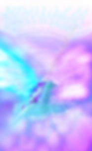 IMG_2521_PNG.webp