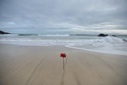 Chris Webber Photographer St Ives