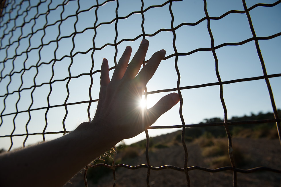 male human hand touching fence cage in j