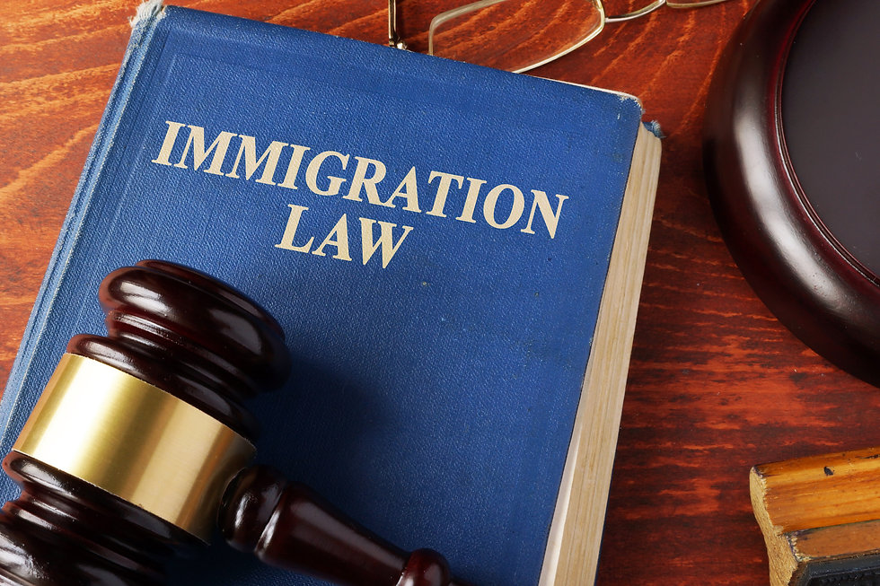 Book with title immigration law on a tab
