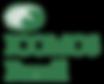 Logo Icomos 3.png
