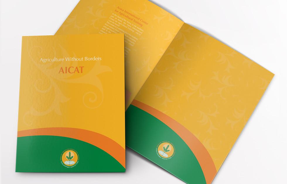 aicat5.jpg