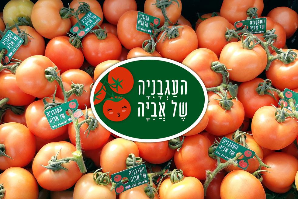 lubish-tomato2.jpg