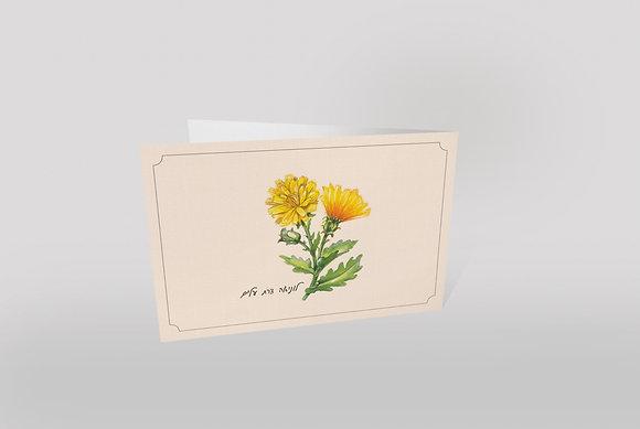 כרטיס ברכה ״תוצרת הערבה״ - לוניאה צרת עלים