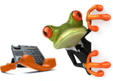 Frog-and-phone-400x286-300x215.jpg