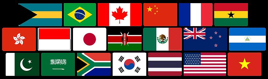 flag banner.png
