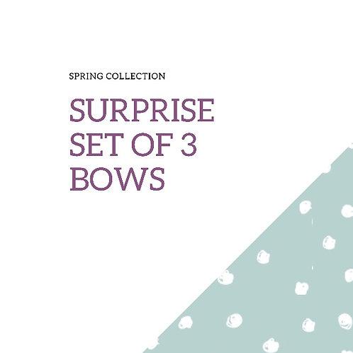 Surprise set of 3 bows - September
