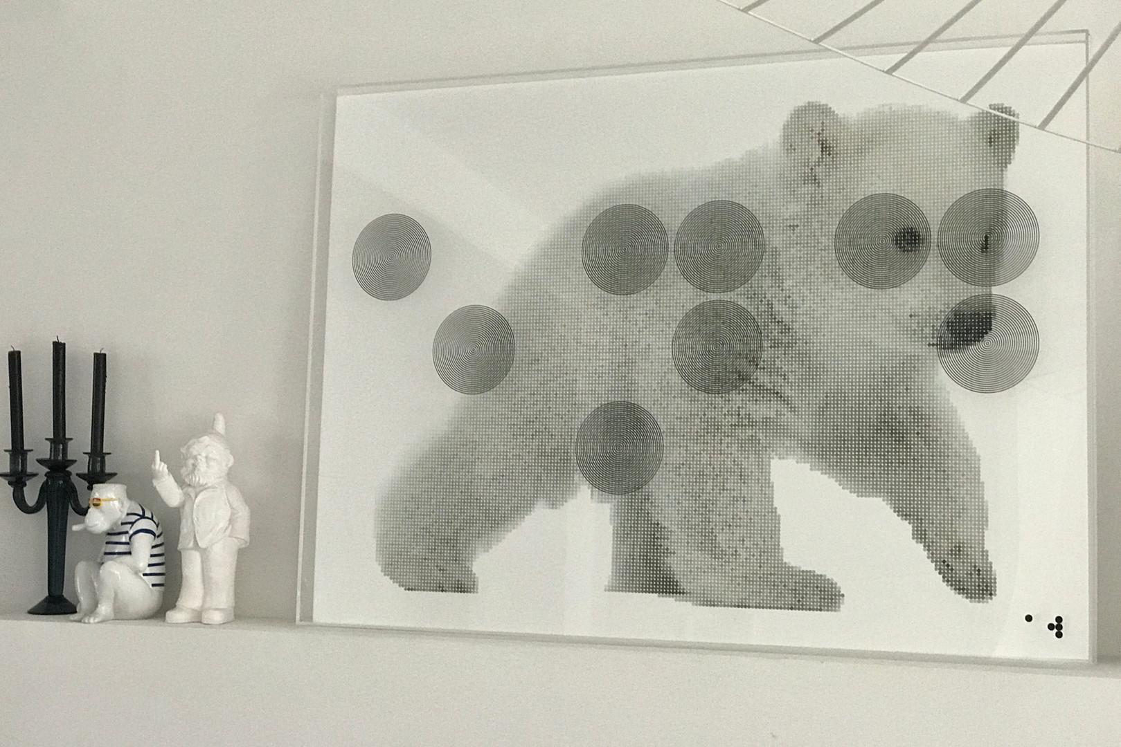 polar bear situ .jpg