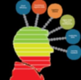 cognitive-enhancement-plan-executives.png