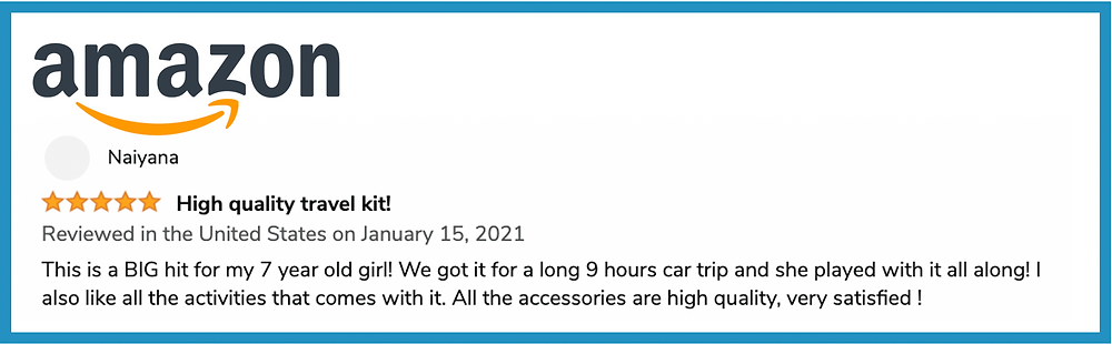 Amazon review about Pipity being a big hit during a road trip