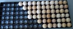 90 Capacity Egg Setting Tray