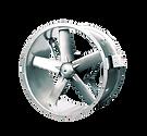 duman-egsoz-fan-logo_edited.png