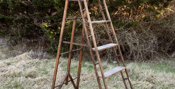 Mayenne Ladder