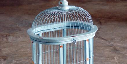 Danube Birdcage
