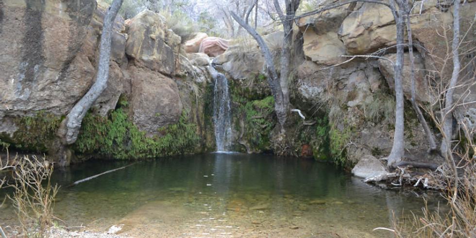 First Creek Canyon Hike