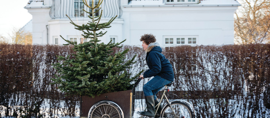 A Beginners Guide to Danish Christmas