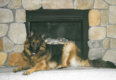 Gunner%2520by%2520fireplace%2520at%25204