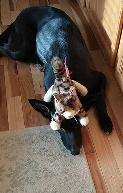 Delta with stuffed animal.jpg